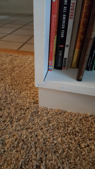 This is the first bookshelf.
